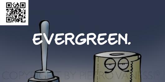 dett_evergreen-2.jpg