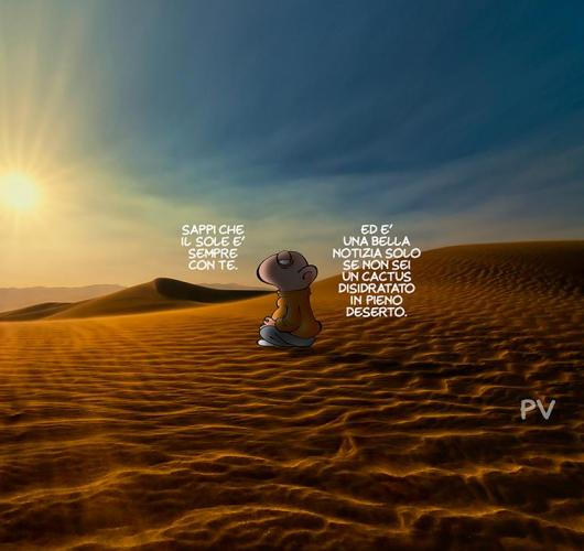 iz-cactus-nel-deserto.jpg