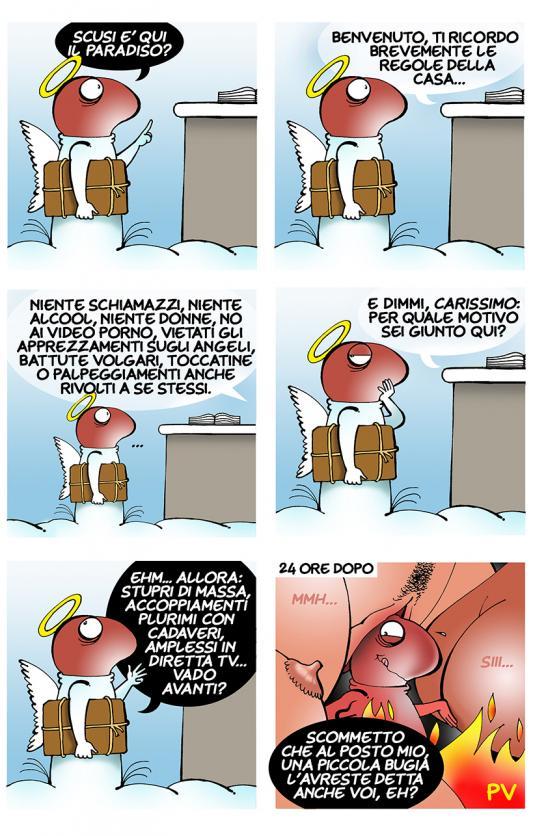 picio-paradiso_low.jpg
