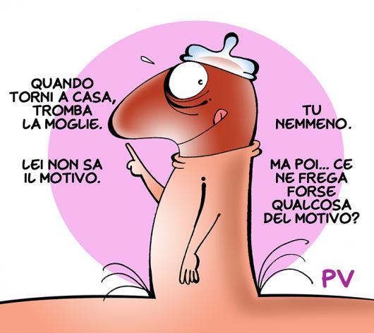 picio-preverbi_low.jpg