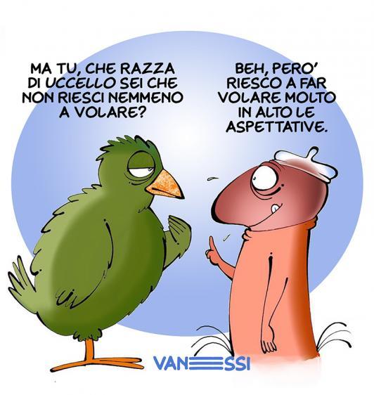 picio_alte-aspettative_ok.jpg